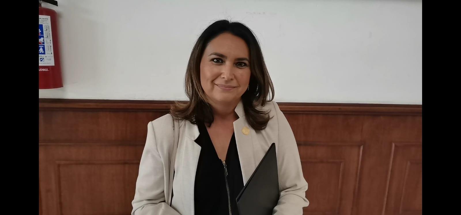 Mayra Valdés, diputada local por el PAN